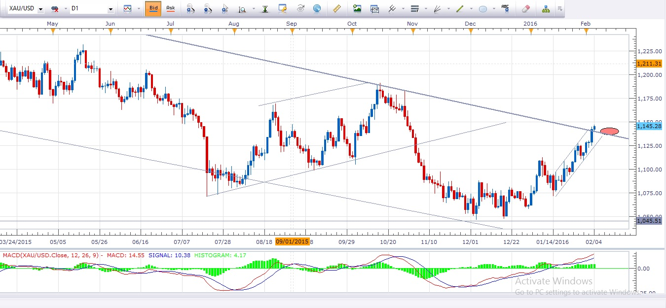 Daily forex news update